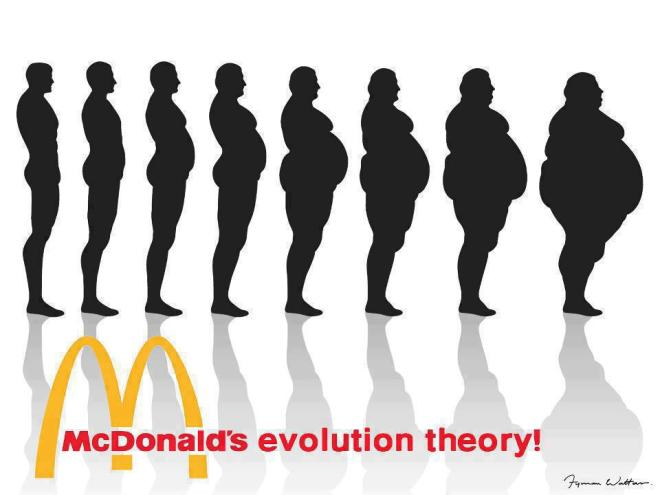 Mcdonalds Evolution Theory